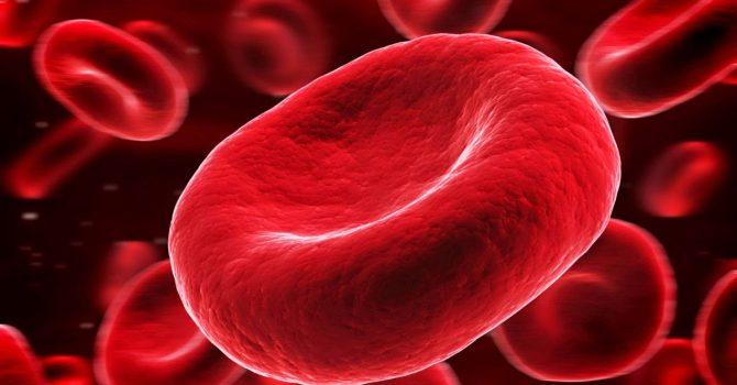 Trombosit Düşüklüğü Ve Yüksekliği Nedir?